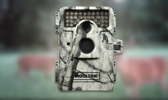 moultrie_m_990i