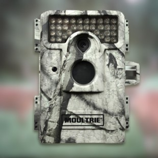 Moultrie M-990i im Test