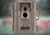 Moultrie A5 im Test