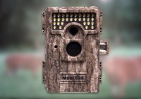 Moultrie M-880 im Test